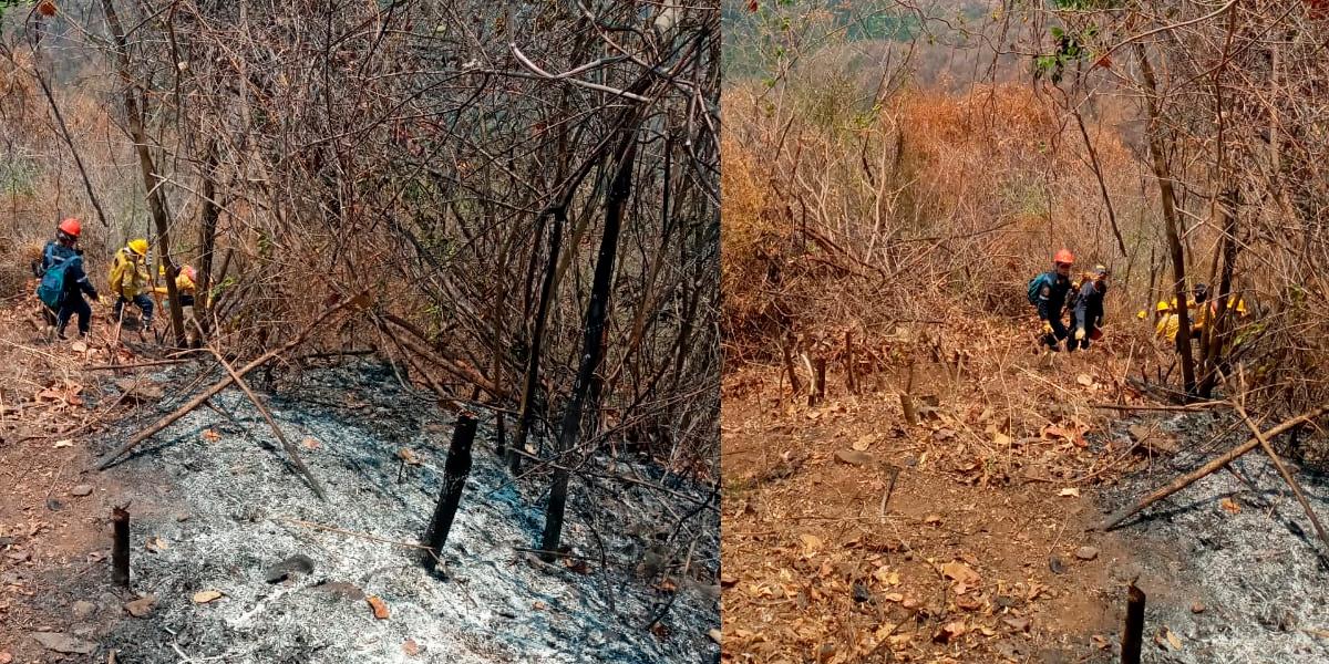 Más de mil hectáreas afectadas por incendios forestales en la Sierra Nevada