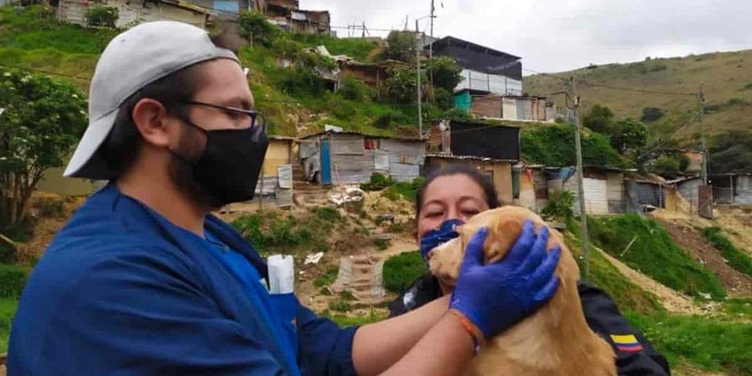 'Huellitas de la calle' llegaron a Bosa y Ciudad Bolívar