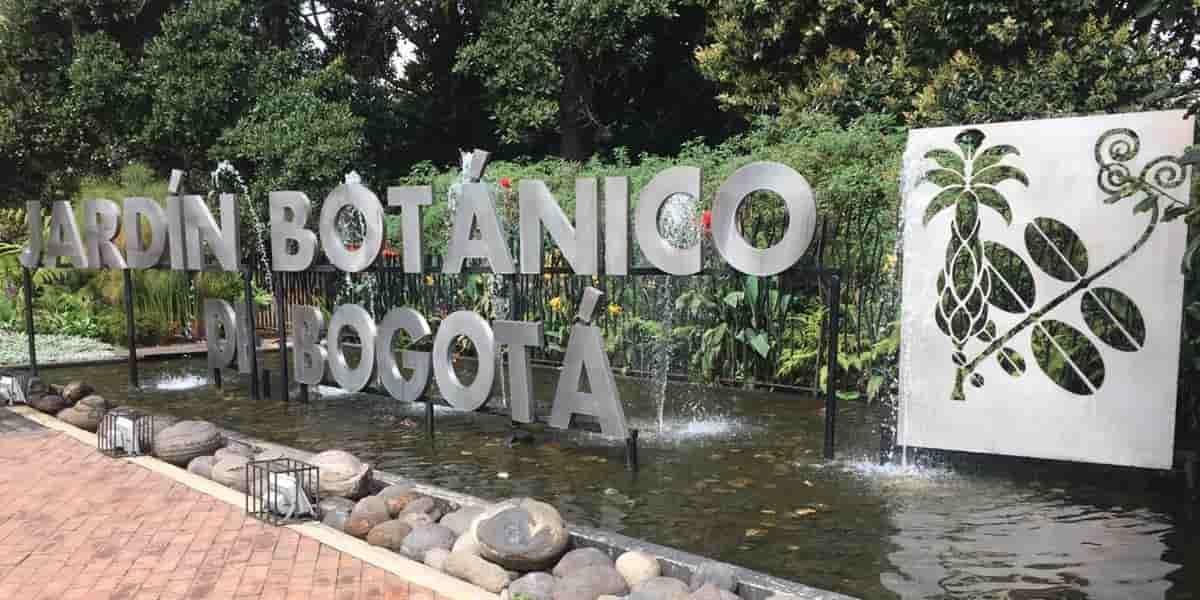 Celebra el cumpleaños del jardín Botánico con increíbles actividades