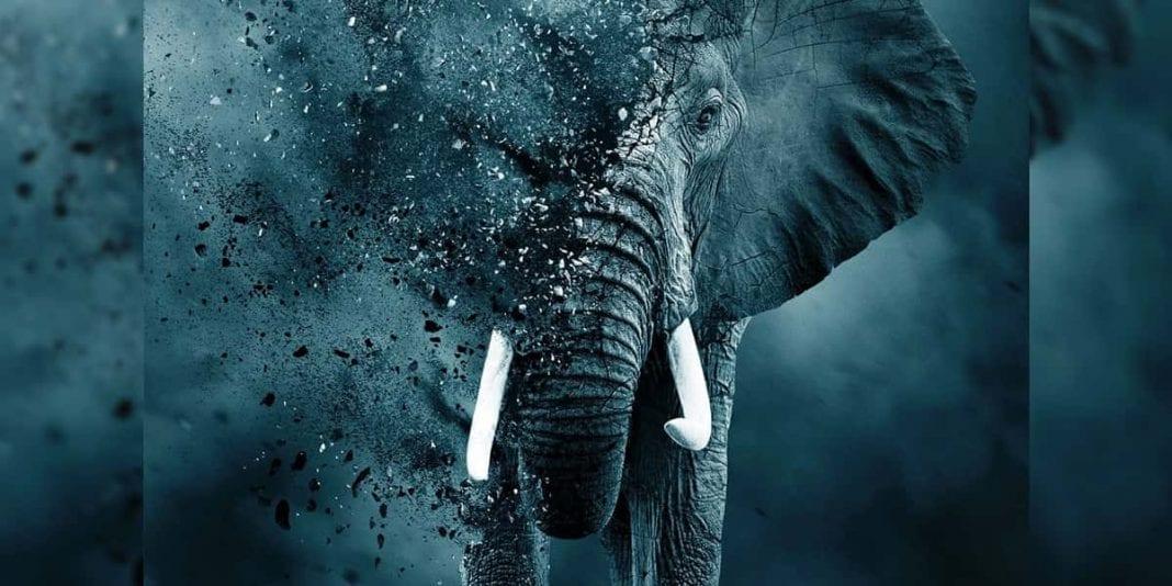 3 documentales que muestran la realidad de nuestro planeta