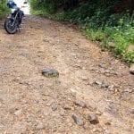 Diez corredores viales en Cundinamarca serán intervenidos
