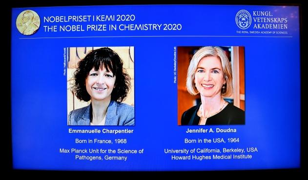 Nobel del Química