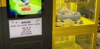¡Indignante! Máquina expendedora de cachorros de gatos y perros en un centro comercial