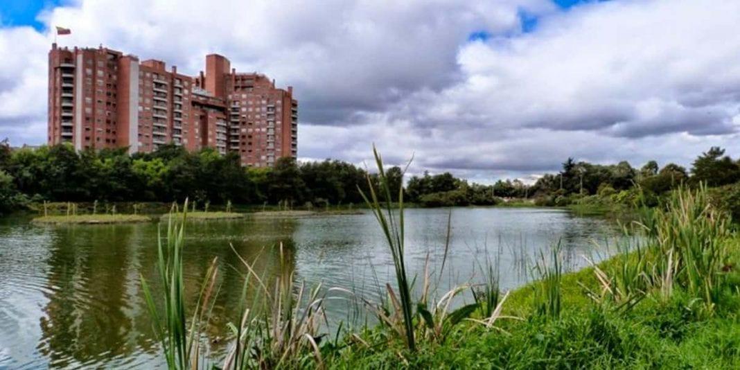 Conozca la estrategia para rescatar los humedales de Bogotá