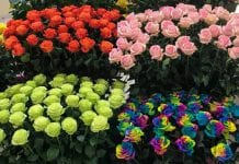 floricultores
