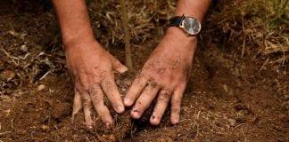 Cundinamarca asegurará pequeños y medianos productores
