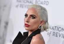 Roban perros de lady Gaga y ella ofrece USD $500 mil como recompensa