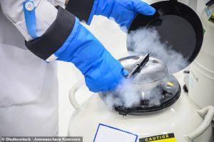 Reino Unido abre la posibilidad de congelar espermatozoides, óvulos y embriones hasta por 55 años