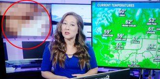 Video porno se coló en transmisión de noticiero en vivo